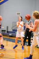 1.5.17 Brock JV Girls vs Tolar 014