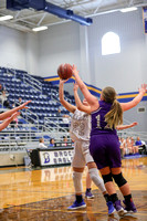1.5.17 Brock JV Girls vs Tolar 017
